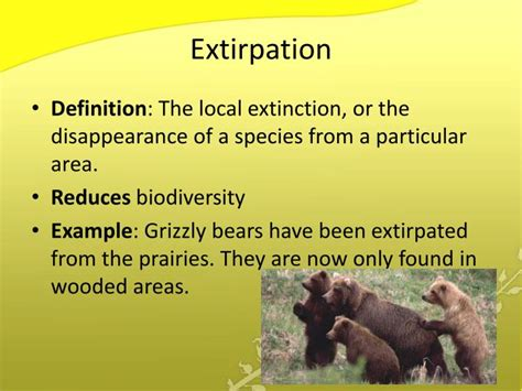 ppt the sixth extinction powerpoint presentation id