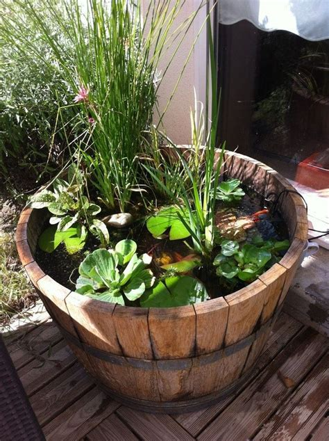 lovely whiskey barrel container pond featuring water
