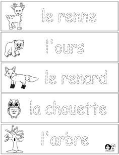 c section in spanish french winter animals worksheets english for children