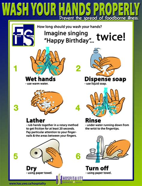 how to wash hand properly in step by step and propery handwashing staff site hospitality services at western division of housing and