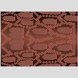Colorful Leopard Print Pattern | 1400 x 980 jpeg 207kB