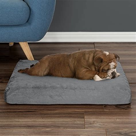 egg crate for bed orthopedic pet bed egg crate and memory foam with washable cover jodyshop