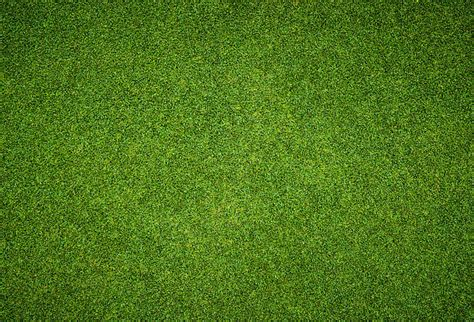 image pattern grass football background pictures images and stock photos istock