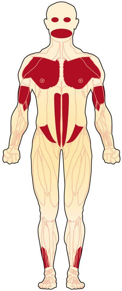 myotonic dystrophy pattern of weakness 15 best fshd muscular dystrophy images on pinterest
