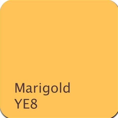 boy color marigold ye8 color yellow color