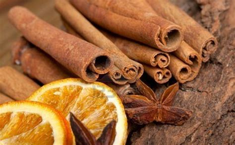 l alimentazione vincente miele e cannella per dimagrire l accoppiata vincente