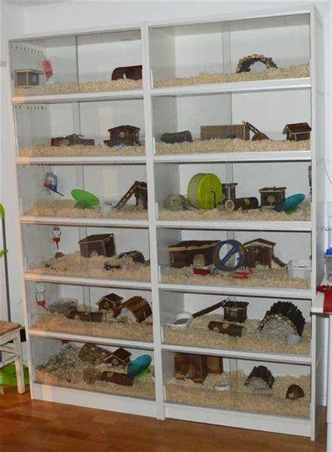 lada terrario convert bookshelf into rodent small animal habitat i d