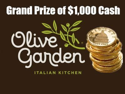 Survey To Win Money - www olivegardensurvey com take your chance in the olive garden guest survey to win