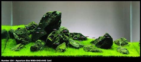 iwagumi japanese rock garden style aquascape aquarium