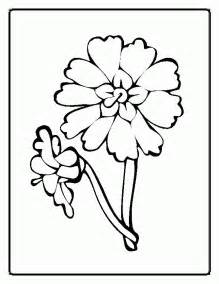 Flower Coloring Sheets For Kids  Free Pages On Masivy sketch template