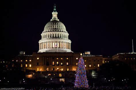 capitol christmas tree lighting tonight at 5pm popville