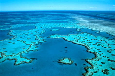 barrier reef from the air photo
