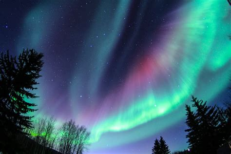 northern lights aurora borealis fairbanks alaska northern lights in fairbanks ak iron blog