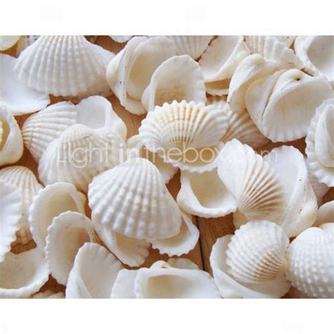beach themed seashell wedding shower table decorations pack of 90