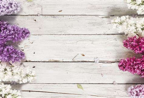 shop wood background lilac flowers wallpaper  flowers leaves theme