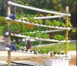 Growing Vertical Gardens Vertical Aquaponics Growing System Business Aquaponics