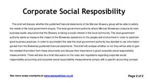 Government And Society Essay by Essay Advisor Essay Exle On Corporate Social