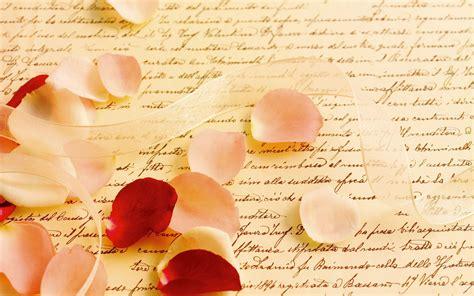 con il nastro rosa testo sfondi cuore testo petali rosa san valentino
