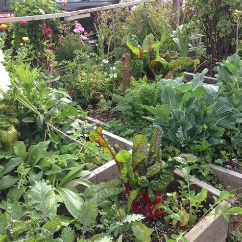 Summer Vegetable Gardening Learn How Do You Keep Your Summer Garden Vegetables