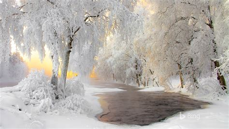 finland winter forest snow river  bing preview