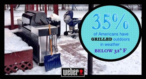 Weber Barbecue 365 by Best 25 365 Grilling Ideas On Weber Grills