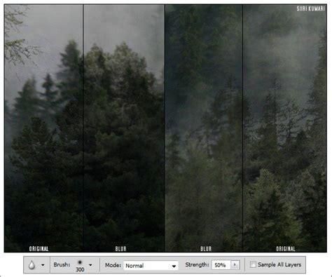 tutorial wpap melalui photoshop cara manipulasi foto quot di dalam hutan yang berkabut