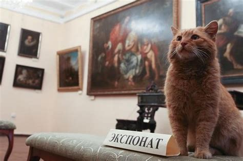 april fools prank wrong he s got a gun this museum s prank went wrong and now they ve employed a cat