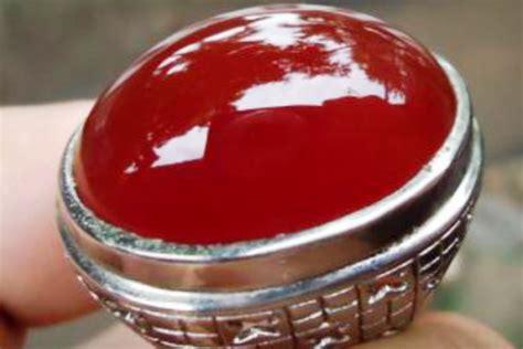 Bangsawan Merah Pacitan baron batu permata unggulan dari pacitan