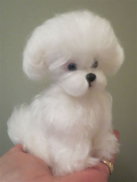 maltese teddy bear cut maltese puppy cut by designs by karen at the toy shoppe