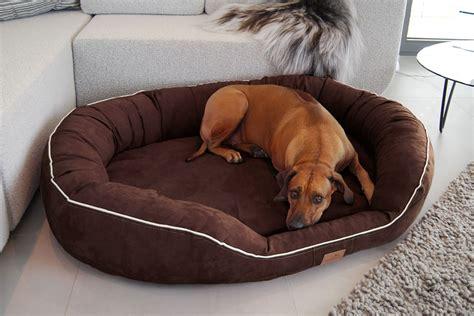 hunde bett orthop 228 disches hundebett marlon visco plus xxxl 170 cm