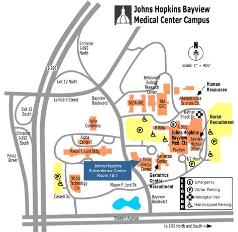 Johns Bayview Center Detox by What To Expect Johns Scleroderma Center