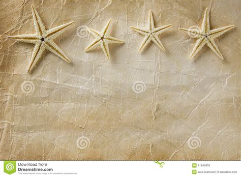 How To Make Starfish With Paper - starfish paper royalty free stock images image 11641879