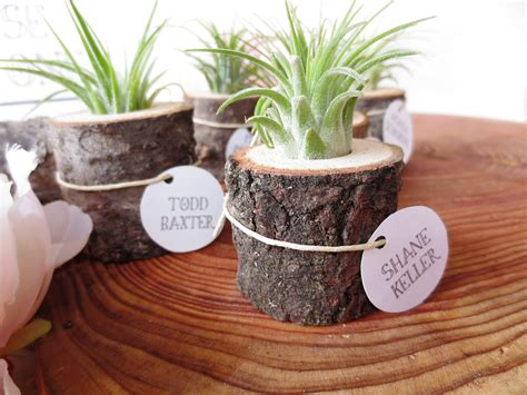Stump Planter by Tree Stump Planter Office Desk Plants And Planters