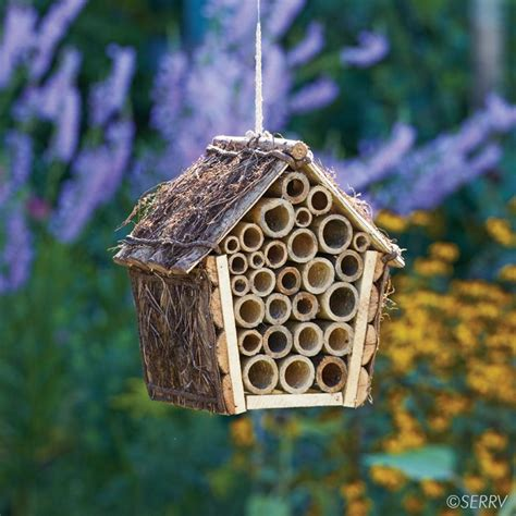 bee houses best 25 bee house ideas on pinterest mason bees bees