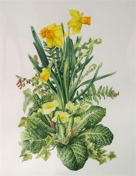 Botanic Botanical Botanical Artists