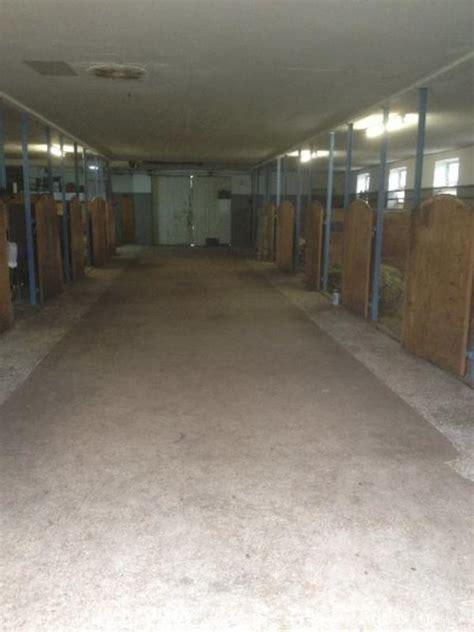 suche stall pferd nette kleinanzeigen boxen offenstall