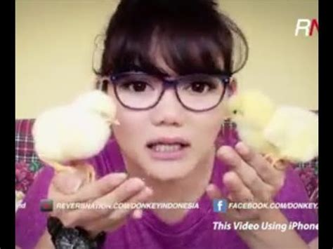 rina nose rina nose donkey band dream youtube