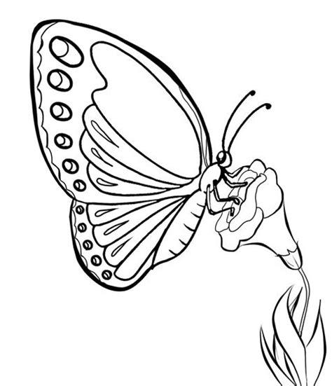 Batik Kupu Kupu Batterflay 451 best images about line butterfly on