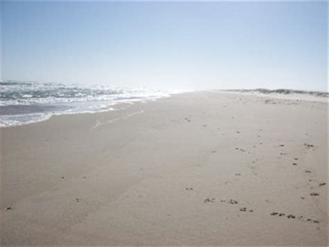 friendly beaches nc friendly beaches cape hatteras national seashore in manteo carolina