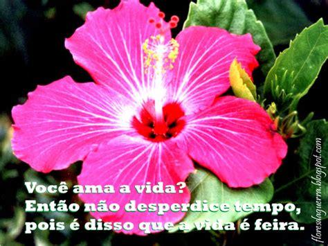 imagens de flores com frase frases con imagenes de flores imagui