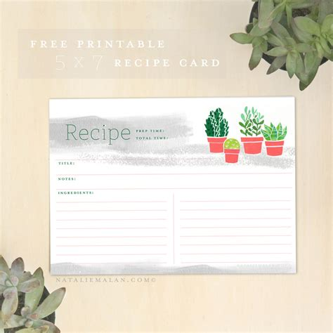 recipe cards 5x7 template free recipe cards printable 5x7 succulent natalie malan