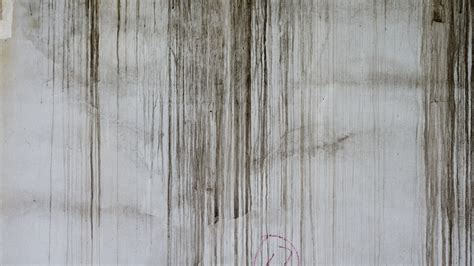 wall paint that doesn t get dirty free images grungy white texture plank floor wall