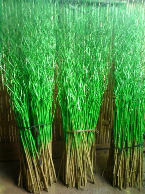 grosir murah bambu ulir  pot rotan warna natural