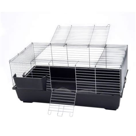 Best Promo Makanan Guinea Bunny Gp Basic 1 5 Kg B25325 1 great bargains on cages at zooplus piggy basic rabbit cage