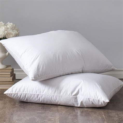 home design down pillow down pillow 2 pack ienjoy home