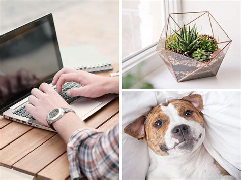 5 tips to set up the ultimate home office my home repair how to set up your home office 5 tips for the perfect