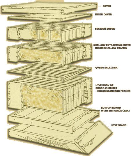 langstroth bee hive plans woodworking projects plans