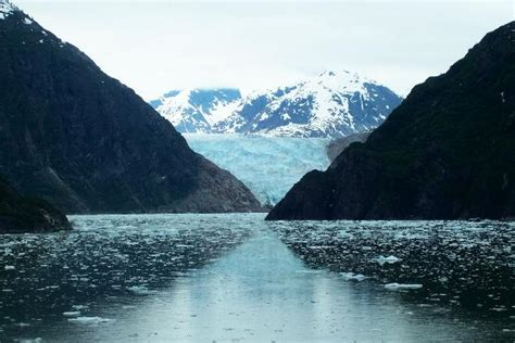 fjord glacier gc1dg1t tracy arm fjord and sawyer glacier earthcache in