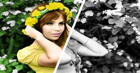 adding color to black and white images corel discovery