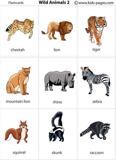 printable animal flashcards for toddlers wild animals 2 flashcard